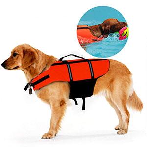 giubbotto salvataggio nella valigia per cani